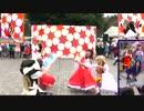 【東大生が】2015駒場祭⑨東大踊々夢【踊ってみた】Part7