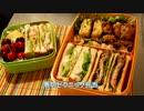 【メガネ食堂】 春のピクニック弁当