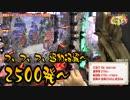 【ペカるTV】ジャギ様が北斗無双で稼いで家族をディズニーに連れて行くの巻【それ行け養分騎士vol.9】 thumbnail