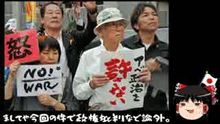 【ゆっくり保守】「軍属による殺人を許さない!」→何故か官邸前で抗議
