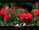 第20位:オメガラジオ 第1回目 16/5/23【生放送】 thumbnail