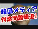 舛添都知事が『親韓派』!?韓国メディアも舛添問題を報道www
