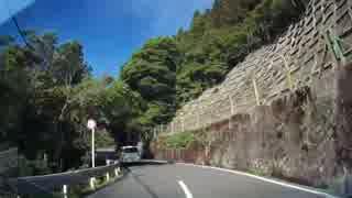 【車載動画】国道299号(下り)Part7