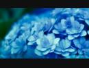 Hydrangea -haro arrange- (Instrumental)