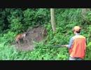 狩猟の現場から これも現実 1/3【閲覧注意!!】有害鳥獣駆除