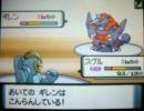 ポケモン Wi-Fi対戦 たけひこvsテリー 2007-05-14
