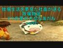 【実況】牧場生活を夢見た社畜が送る牧場物語 part7 【3つの里】
