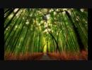【東方自作アレンジ】千年幻想郷~秋の永遠亭アレンジ~【バンブラP】
