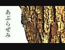 あぶらぜみ【オリジナル曲】【初音ミク】