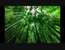【睡眠・ヒーリングBGM】体調不調や不安を低減【ゆらぎ/バイノーラル音】 thumbnail