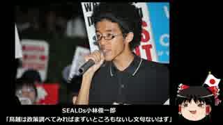 【ゆっくり保守】SEALDs「鳥越の政策には文句ないはず」