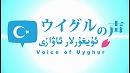 【ウイグルの声/Uyghurlar Awazi #1】ウイグルの基礎知識及び「7・5 ウルムチ虐殺事件」について[桜H28/7/29]