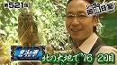 シーサ。の回胴日記_第521話 [by ARROWS-SCREEN]