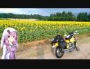 夏休みなので無計画に走るよ!2日目『新潟』【結月ゆかり車載】 thumbnail