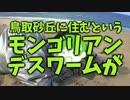 【旅動画】ぼくらは新世界で旅をする Part:13【中国拉麺編】