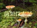 【キノコ狩り_20160702】 菌類探索記 「地上生虫草発見難易度最高峰」