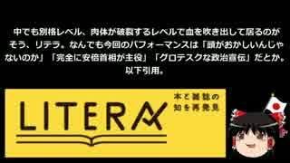 【ゆっくり保守】リオ五輪閉幕、リテラ大