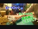 【無回答ラジヲ】Vol.1 箱で魚類捕獲計画Part.1