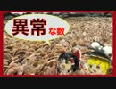 第92位:貝殻拾いの旅 in ベトナム!!②<後編>