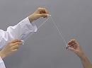 科学実験!ディスプレーケースとビー玉をぶつけてみよう!【科学でワオ!365】