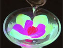 科学実験!光る花が作れる?!化学発光について調べよう!【科学でワオ!365】