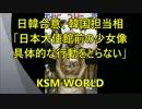 日韓合意「政府から撤去に動かず」日本大使館前の少女像で韓国担当相