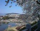 花と緑のシンフォニーぐんま2008 群馬県前橋市