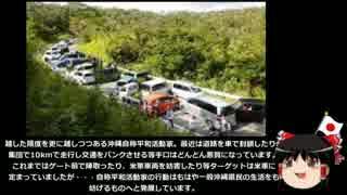 【ゆっくり保守】沖縄活動家が勝手に検問をしトラブルに発展。