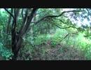 里山で藪漕ぎ #1