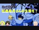 HOT!DOTT!情報局~PART17~