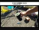 釣り 超レア 空き缶(11センチ)