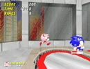 [8] Sonic Robo Blast 2 マルチプレイ通常冒険02
