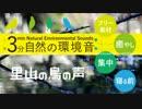 3分自然の環境音01【里山の鳥の声】