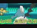 【ポケモンORAS】歴史に刻むシングルレートAct30【無限の勝筋】
