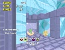 [5] Sonic Robo Blast 2 マルチプレイかくれんぼ08