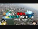 【ゆっくり】クルーズ旅行記 3 伊丹空港→羽田空港