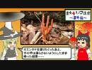 【東方毒キノコ講座】カエンタケに触ってみた【番外編】