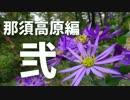 【アウトドア】ぽしゅるとひでおのキャンプ道 那須高原編 Part2