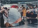 【葛城奈海・海幸山幸の詩 #20】和田の鯨~これまでも、そしてこれからも[桜H28/11/16]