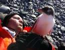 ペンギンさん…む…胸が あたってるんですけど