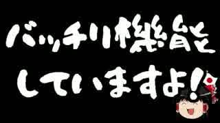 【ゆっくり保守】蓮舫効果はありまぁす!
