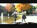 【みきゅ】ぴんこすてぃっくLuv 踊ってみた【杏奈】