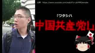 【ゆっくり保守】沖縄県民の皆様、不審者にご注意下さい!
