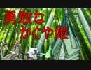 【ポケモンSM】ヤケモン達と強くなるシングルレート【UB04ーYLASTER】