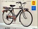 中村悠一 自転車 ダサい