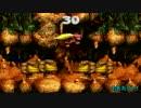 猿とゴリラとチンパンジー 【スーパードンキーコング3】 Part12
