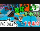 【特殊ルール】スプラトゥーン画面きんし!【マヒマヒコーヒー】+α