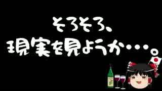 【ゆっくり保守】故・SEALDs「私達には路上がある!」←えぇ・・・