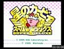 【2位】星のカービィSDX 100% 1:13:33 thumbnail