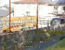 弱迷車見文録 #21 岡電のお買い物